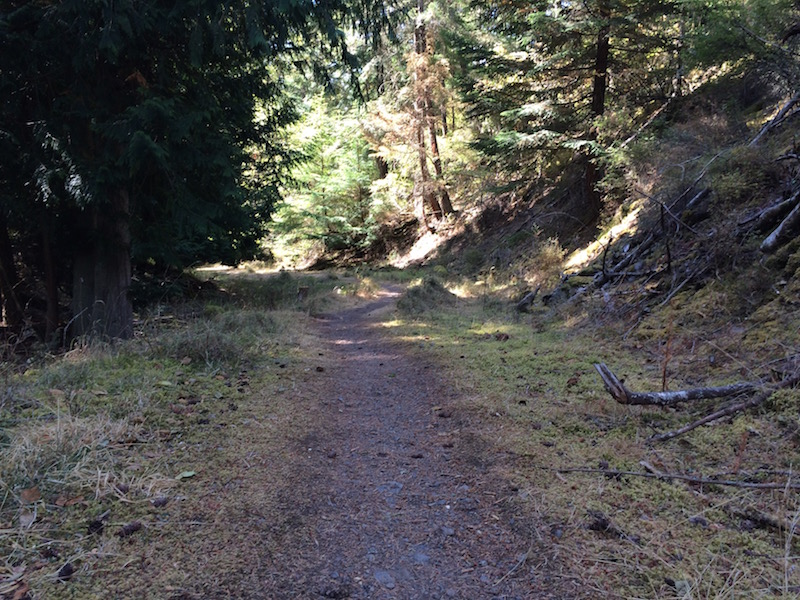 Fall is a great time to enjoy the outdoors before the weather changes significantly. A trail into the woods is perfect! Turtleback Preserve (Orcas Island). Photo by B.Imei Hsu, taken with a iPhone 5s.